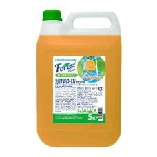 Концентрат для мытья пола  Forest сlean  Сочный апельсин Рн 11,5 щелочной, 5 литров ЕВРО